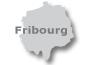 Zum Freiburg-Portal