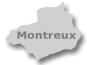 Zum Montreux-Portal